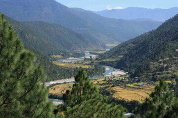 Blick aufs Punakha Valley