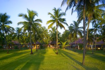 Garten des Nattika Beach Resorts in Indien