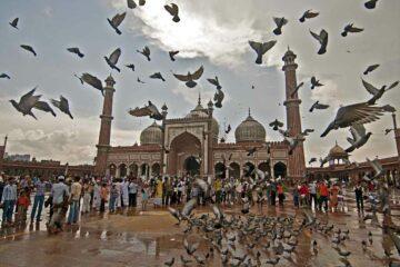 Jama Maszid in Delhi