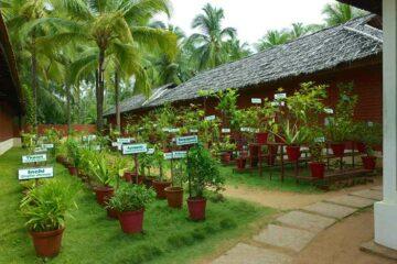 Kräutergarten im Nattika Beach in Kerala