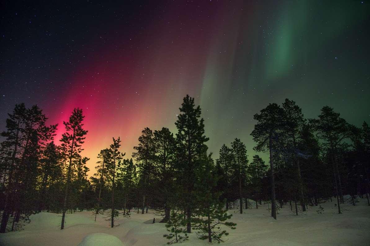 Polarlichter über Winterlandschaft