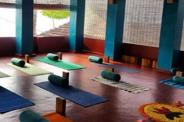 Bunte Yogamatten in Atriumatmosphäre