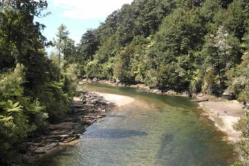 Flusslauf am Abel Tasman Coast Track