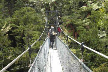 Hängebrücke auf dem Coast Track