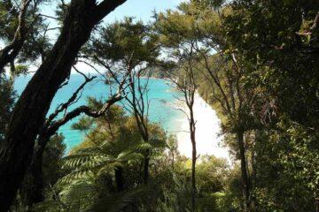 Blick vom Abel Tasman Coast Track auf den Nationalpark