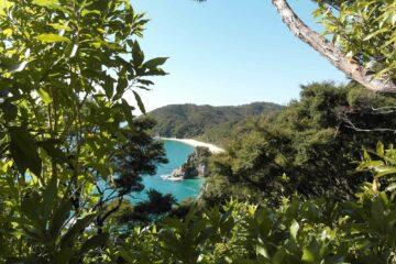 Blick über einen weißen Strand im Abel Tasman Nationalpark