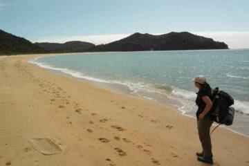 Langer Strand im Abel Tasman Nationalpark