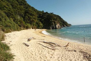 Einsamer Strand im Abel Tasman Nationalpark
