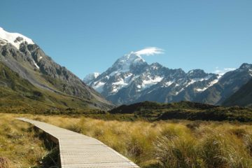 Blick auf den Mount Cook