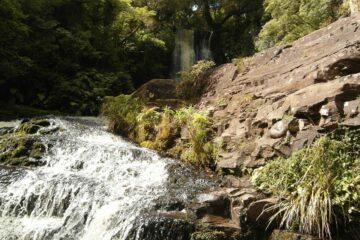 Wasserfall in den Catlins