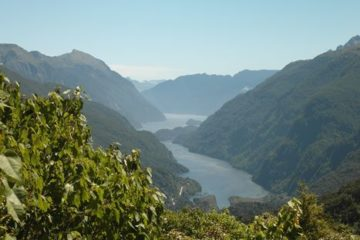 Blick auf den Doubtful Sound