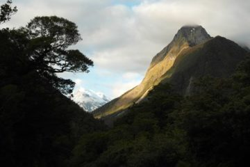 Berge im Fiordland Nationalpark