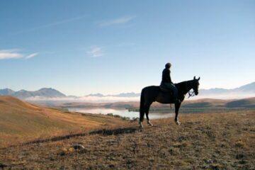 Auf dem Rücken der Pferde zu Seen und Gletschern
