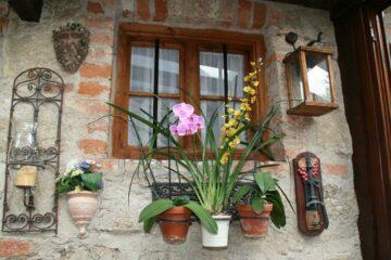 Fenster mit Blumen im Pilgerhof