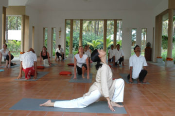 Mini Kühlschrank Mit Yoga : Lenovo tablet yoga tab pro puma black mediamarkt