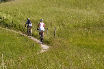 Fahrradfahrer auf dem Wiesenweg