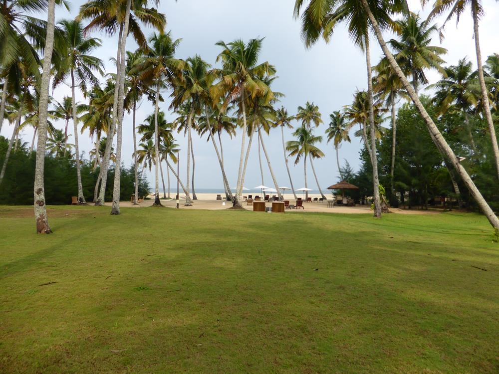 Ayurveda- und Entspannungsreise in den Süden Indiens