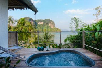 Plunge Pool Deluxe