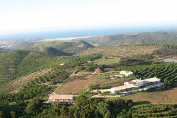 Detoxkur an der Algarve: Entgiftung mit Yoga