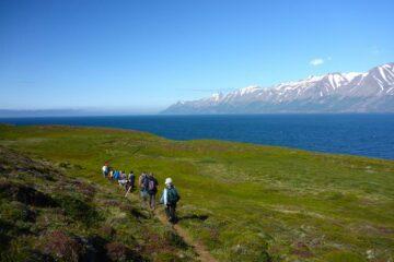 Blick auf eine Wandergruppe im Fjord