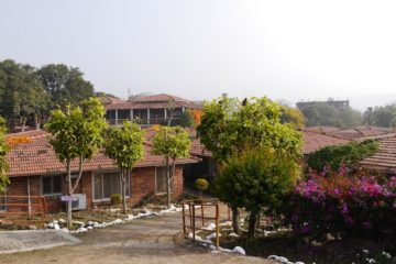 Blick auf Bäume vor den Bungalows im Swami Rama Sadhaka Grana Ashram