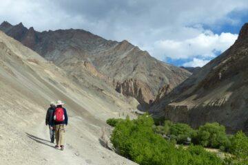 Zwei Wanderer mit rotem Rucksack auf Bergpass an Abhang mit grünen Bäumen unter Ihnen