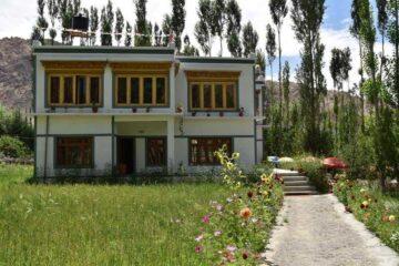 Blick auf weißes Gästehaus mit Zugangsweg in Ladakh