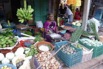alte indische Frau sitzt hinter ihren Körben mit Gemüse zum Verkauf in Nordindien