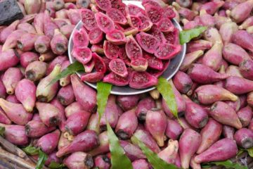 Rote exotische Frucht halbiert
