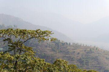 Blick über Hügel in Nordindien