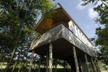 Seitenansicht Baumhaus auf Stelzen