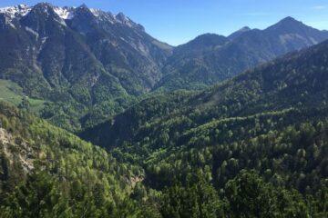 Blick über grüne Hügel