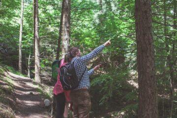 Seminarleiter zeigt Teilnehmerin etwas in den Bäumen