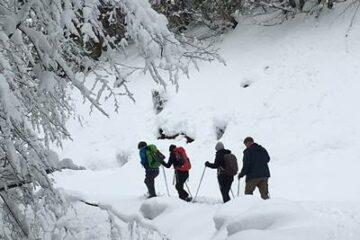 Vier Personen wandern durch Schneelandschaft