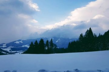 Berge und Bäume in dunkler Winteratmosphäre