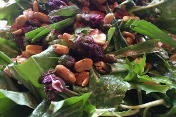 Frischer Salat mit Nüssen