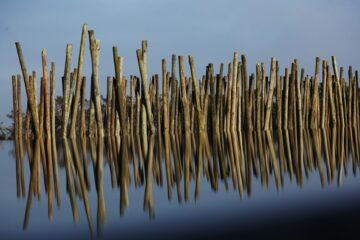 Spiegelung Holzpalisaden im Wasser