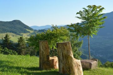 Zwei massive Holzsessel auf Wiese vor Bergpanorama