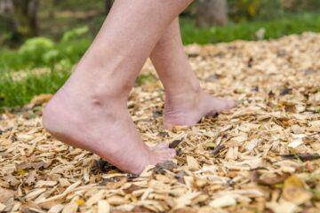 Nackte Füße auf holzigem Naturpfad