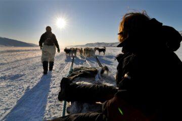 Mann läuft neben Hundeschlitten der eine Frau zieht