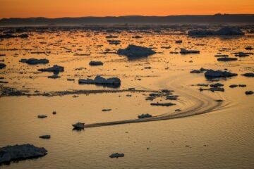 Fjord und Eis in orangenes Licht getaucht