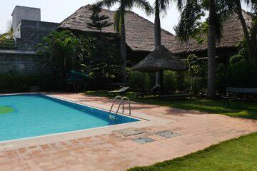 Pool und Palmen