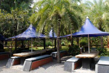Tische mit Bänken und Sonnenschirmen inmitten von Palmen