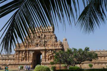 Tempel hinter Palmen