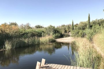 Schwimmteich des Eco-Hideaways