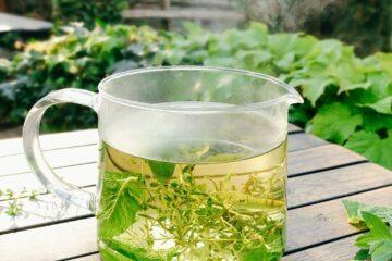 Tasse mit Tee aus Kräutern