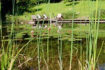 Steg mit Holzstühlen am Teich