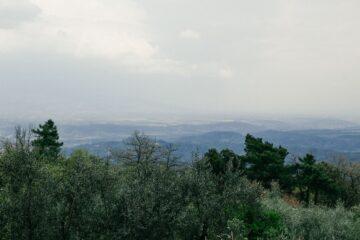 Blick auf das neblige Tal