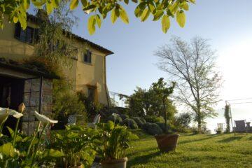 Sonnenlicht bescheint Haus und Garten
