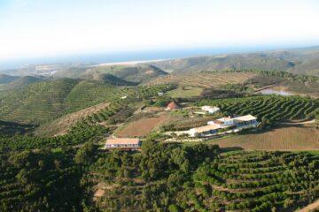 Blick über grüne Hügel zum Retreat